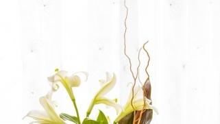 Fête des Mères : optez pour la livraison de fleurs !