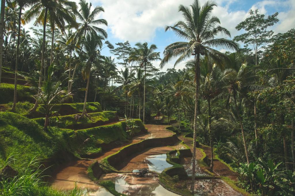 Partir en voyage de noces à Bali